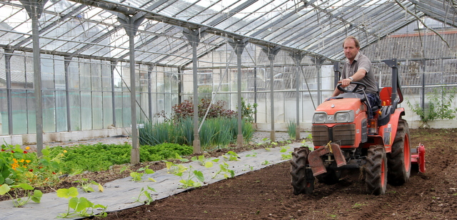 Glasshouses at Ballymaloe Cookery School
