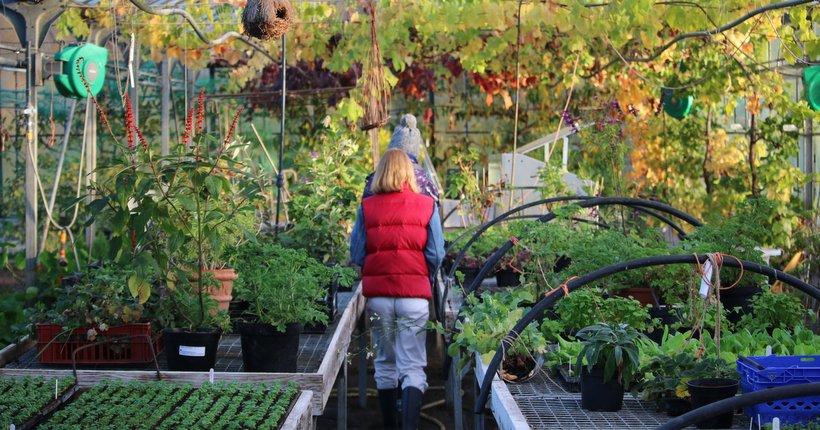 Ballymaloe Cookery School and  Organic Farm
