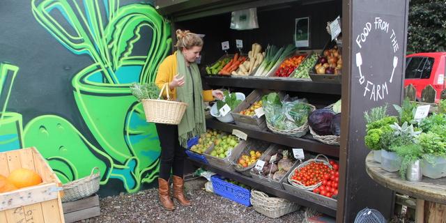The Garden Shop at Ballymaloe Cookery School