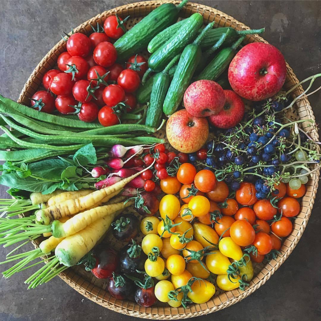 Ballymaloe Cookery School Cucumber Sustainable Food Course